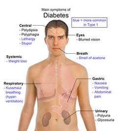saharniy-diabet-lechenie-preparati-dlya-korrektsii-vesa