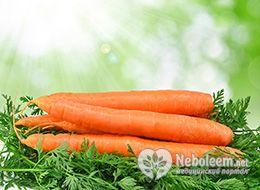 Скільки калорій в морквині - свіжої, тушкованої, вареної