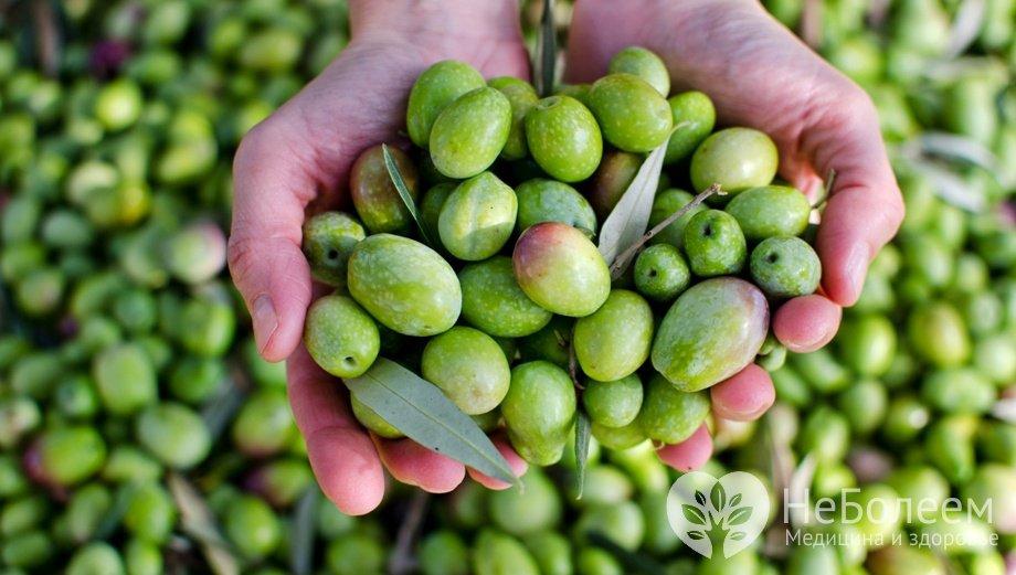 Оливки маслины калорийность