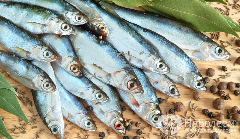 риба салака