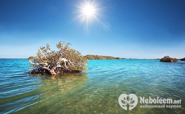korallovaya-voda-pri-psoriaze