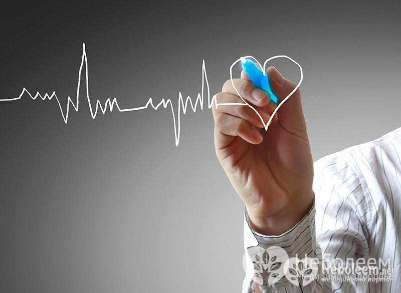 факторы культуры здорового образа жизни