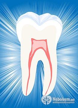 Сколько болит зуб который выдернули
