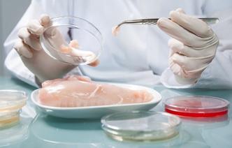 Еда будущего: 7 новых видов пищевых продуктов