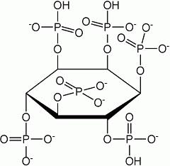 Фитиновая кислота