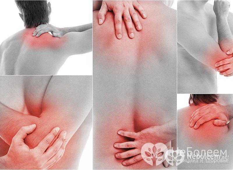 Болят все мышцы и суставы ног трансфер фактор суставы