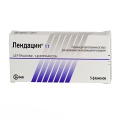 Порошок для приготовления раствора для внутривенных и внутримышечных инъекций Лендацин