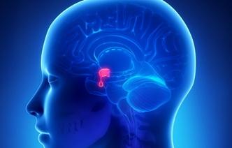 5 мифов об опухолях гипофиза