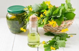 Лечение чистотелом: 6 средств домашнего приготовления